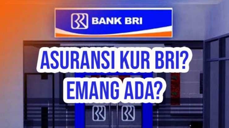 Apa Itu Asuransi Pinjaman Bank BRI
